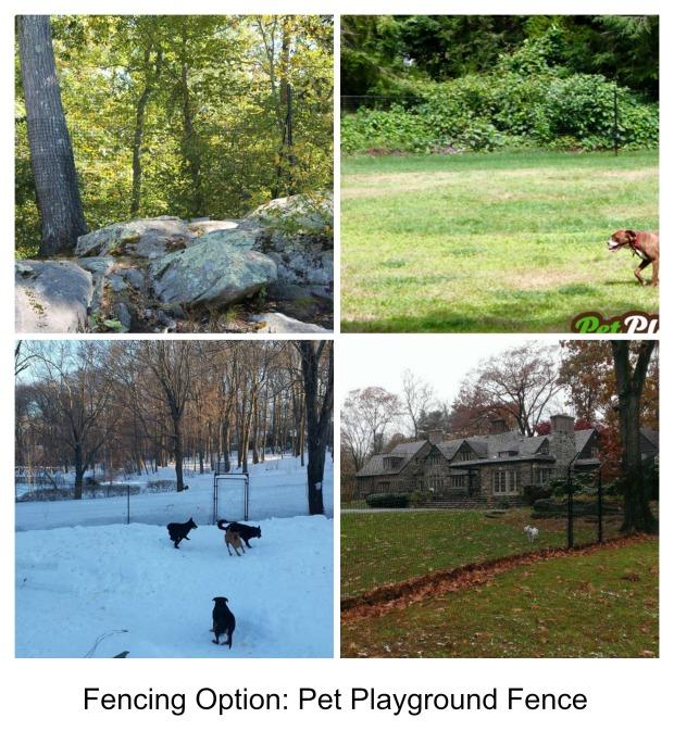Pet Playground Fence